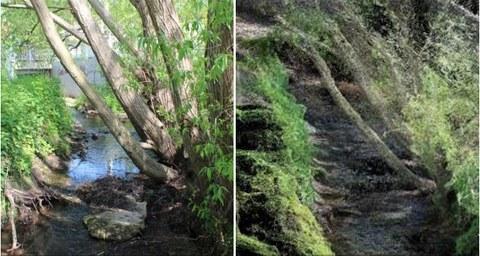 Projekt Creek 4D