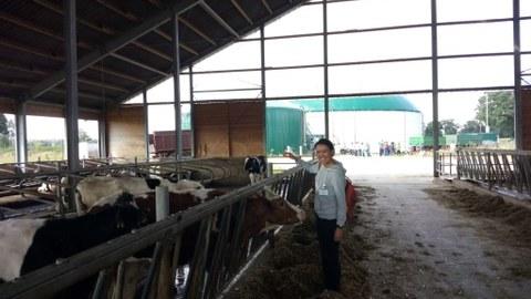 farm 2 in France