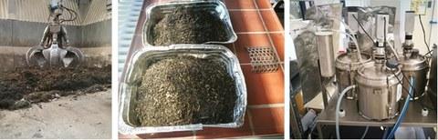 Probenahme, Aufbereitung und anaerobe Umsetzung von Bioabfällen aus der getrennten Bioabfallsammlung