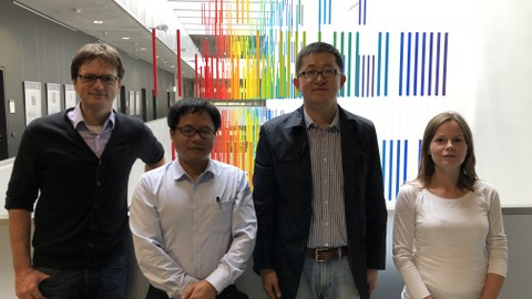 From right to left: Dr. Markiewicz, Prof Wang, Prof. He and Prof. Stolte