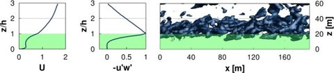 Ergebnisse füer homogenen Wald