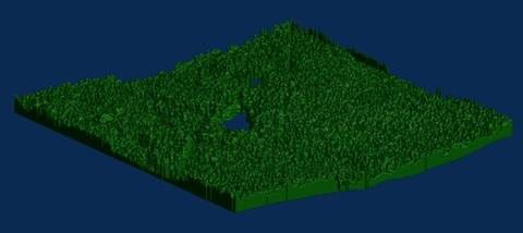 Dreidimensionale Vegetationsverteilung