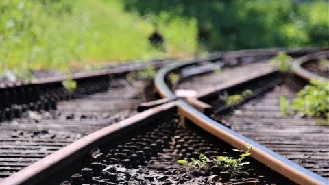 Zwei Schienenstränge treffen aufeinander und werden mit einer Weiche verbunden. Rundherum an der Strecke ist Buschwerk.