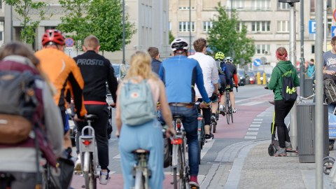 Rückenansicht von vielen Radfahrenden, die Hinter- und nebeneinander auf einem Radweg in einer Stadt fahren.