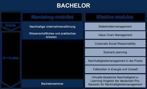 Bachelor grafic