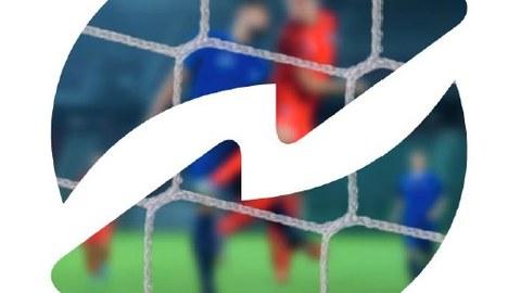 Nachhaltigkeitsmanagement im Profifußball