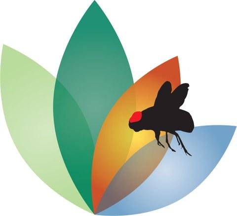 FOR2682 Logo