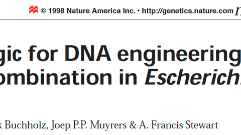 It is a picture of the header of a scientific publication