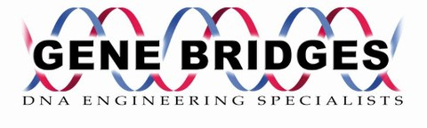 Logo Gene Bridges