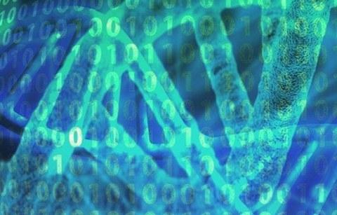 Cellbiology Image