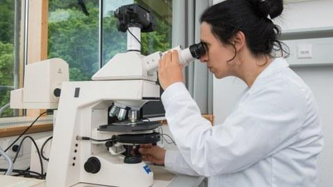 Frau an Mikroskop
