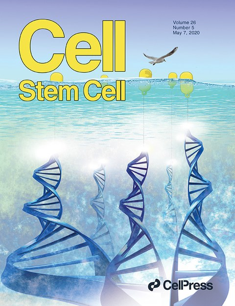 cover_cell-stemcell0420