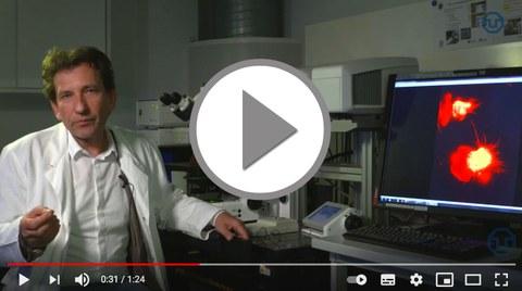 Video zum 250. GB von Alexander von Humboldt