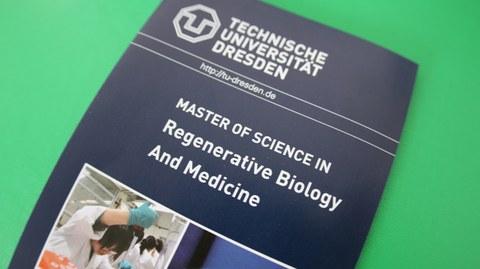 Flyer des Masterstudiengangs Regenerative Biology and Medicine