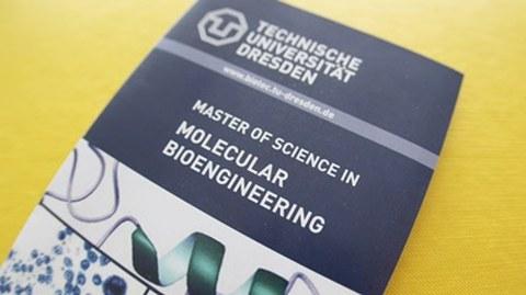 Flyer des Masterstudiengangs Molecular Bioengeneering