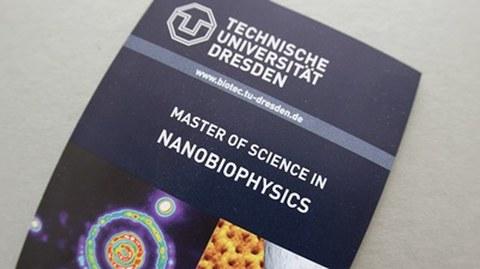 Flyer des Masterstudiengangs Nanobiophysics