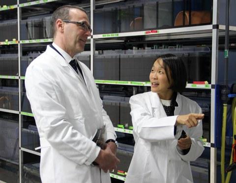 Professor Elly Tanaka explained the British Ambassador in Germany, Simon McDonald, the regeneration of Axolotls.