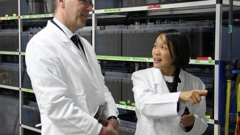 Professorin Elly Tanaka erklärt dem Britischen Botschafter in Deutschland, Simon McDonald, die Regenerationsfähigkeit von Axolotln.