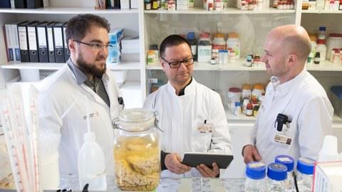 Marcel Naumann, Dr. Arun Pal and Prof. Dr. Dr. Andreas Hermann
