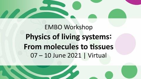 banner für die Konferenz. Text auf einem bunten Hintergrund, der eine Karikatur einer Zelle und Organellen zeigt.