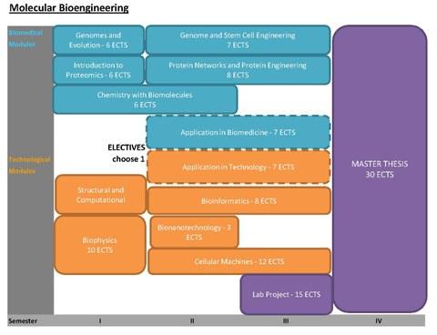 MolBio curriculum and modules