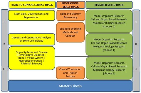 RegBioMed curriculum and modules
