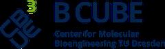 Logo B CUBE