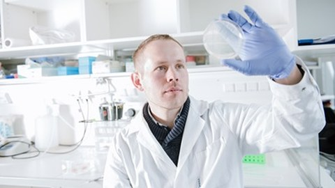 Forscher sieht sich Petrischale an
