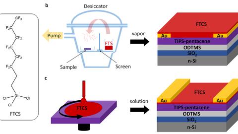 Schematischer Vergleich zwischen lösungsprozessierten und vakuumabgeschiedenen organischen Bauelementen