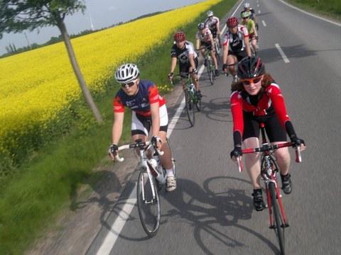 Foto: Gruppe von Rennradfahrern auf Straße, dahinter ein blühendes Rapsfeld