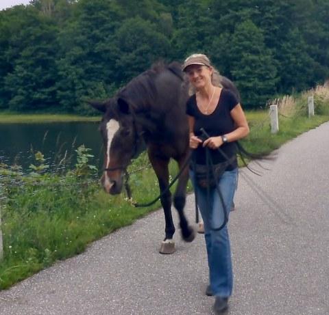 Foto: eine Frau führt ein Pferd