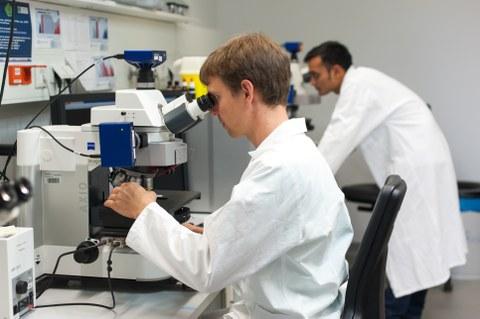 Nachwuchswissenschaftler im Labor