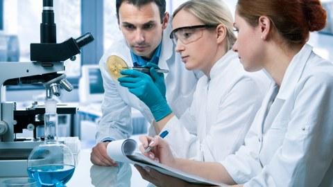 Zwei Wissenschaftlerinnen und ein Wissenschaftler bei der Untersuchung einer Petrischale im Labor.