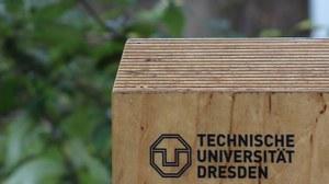 Zu sehen ist das Logo der TU Dresden auf einem Holzbrett. Im Hintergrund erkennt man verschwommen das Grün von Bäumen.