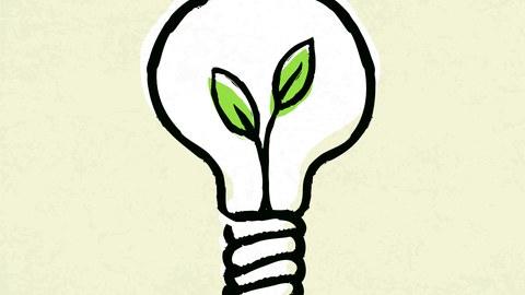 Illustration. In einer Glühbirne befindet sich ein Pflanzenkeim.