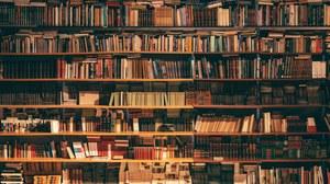 Bücherregal Forschung