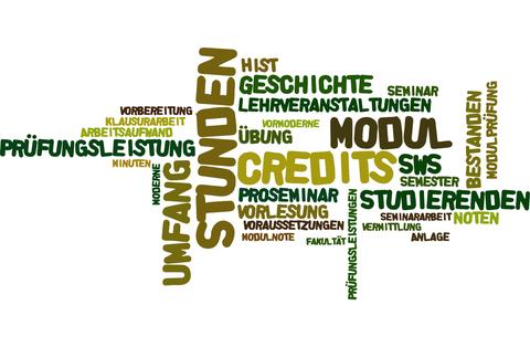 Wordcloud mit Begriffen aus der Studienordnung