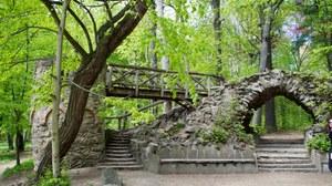 Steinbrücke mit Waldpanorama