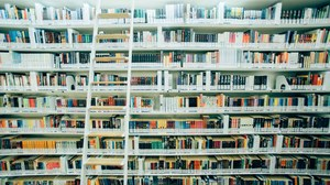 Bücherregal mit Leiter