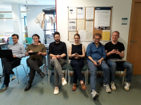 Team Teilprojekt P