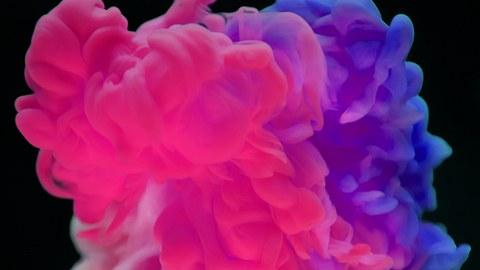 Farbexplosion in rosa und lila