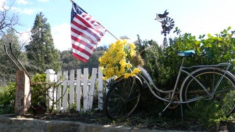 Fahrrad Blumen US Flagge Windrad