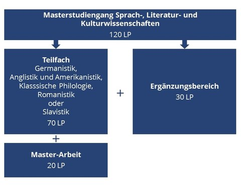 Schematischer Überblick Master