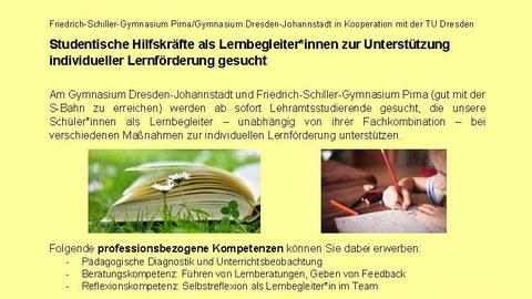 """Ausschnitt des Flyers """"Studentische Hilfskräfte als Lernbegleiter am Friedrich-Schiller-Gymnasium Pirna und am Gymnasium Dresden-Johannstadt gesucht"""""""