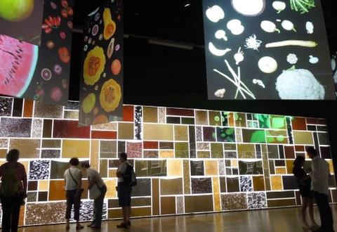 Pavillon Zero: Pflanzensamen