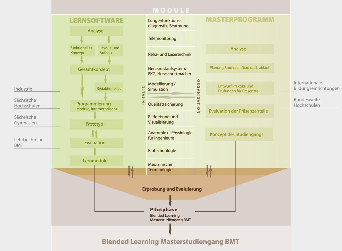 Nett Anatomie Und Physiologie Projekt Galerie - Menschliche Anatomie ...