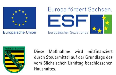 Logo ESF Founding