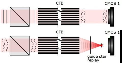 In-vivo calibration holoscope