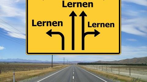 """Foto: eine Straße mit einem gelben Wegweiser-Schild. Darauf sind Pfeile abgebildte, die unterschiedliche Richtungen zeigen. Als Zielort ist aber überall """"Lernen"""" genannt."""