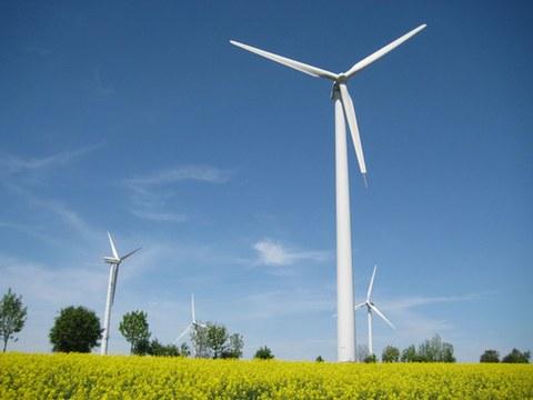 Windräder, die in einem Rapsfeld stehen